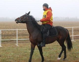 Главы двух администраций скакали на лошадях