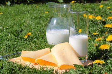 Кабардино-Балкария увеличила производство молока