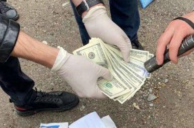 В Пятигорске двух экс-полицейских осудили за взятку в 6,6 тыс. долларов