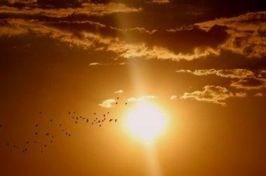 На Северном Кавказе «опасном солнце»