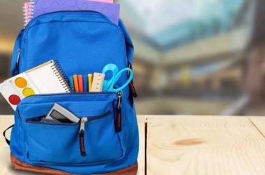 Выплаты на школьников от государства, 10тр – да
